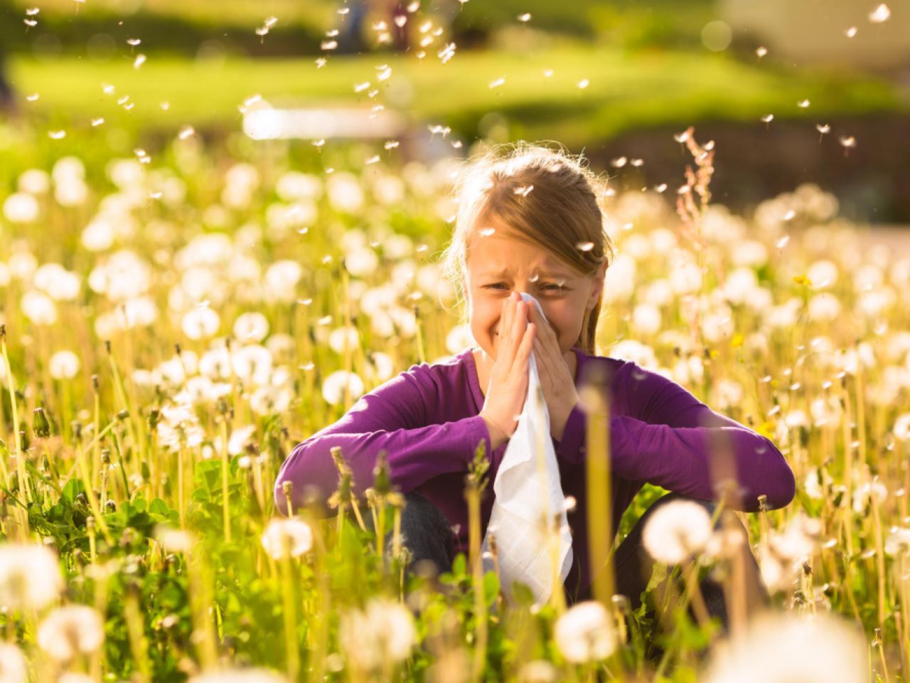 allergie 15 04