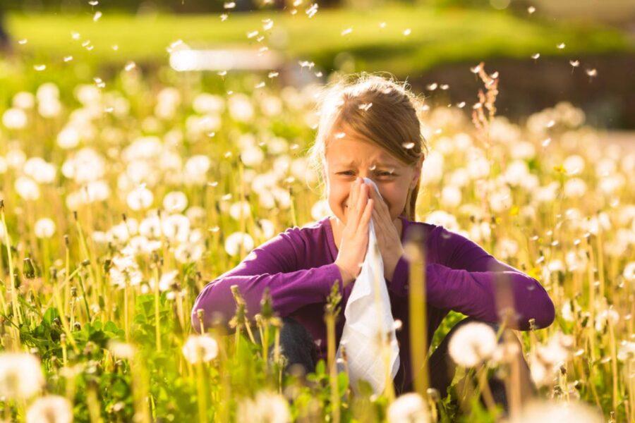 Allergie di primavera